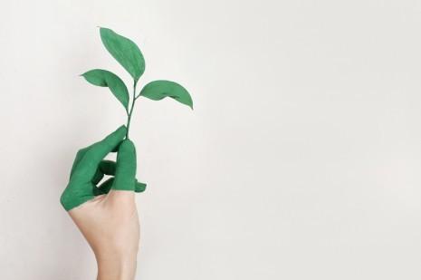 Saiba como reduzir a pegada ecológica do seu carro