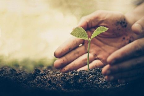PRIO assina manifesto que apoia o desenvolvimento sustentável