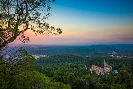 """""""Vai Passear"""": é obrigatório conheceres as incríveis paisagens da Serra do Bussaco"""